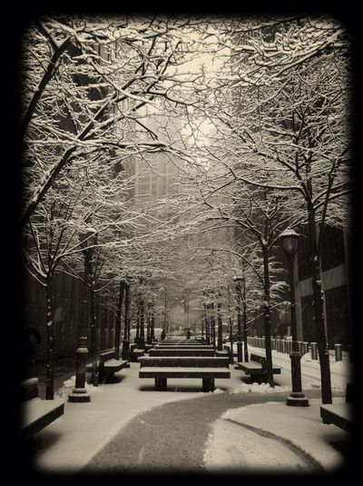 Fresh And Clean GetYourGuide - Cityscapes Snow Amazing View