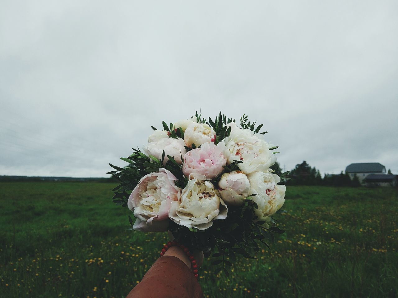 flower, human hand, holding, nature, one person, bouquet, human body part, beauty in nature, fragility, real people, field, outdoors, day, women, sky, freshness, close-up, flower head, grass, bride, people