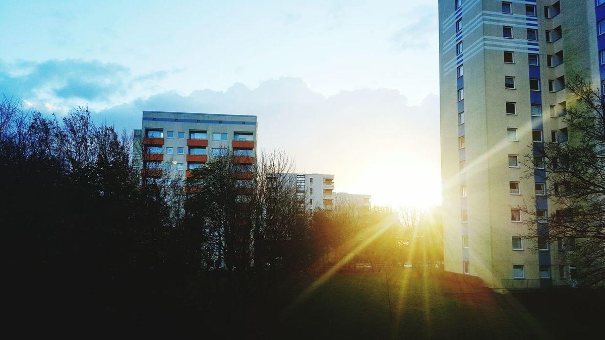Bigcitylife Sunlight сонце☀