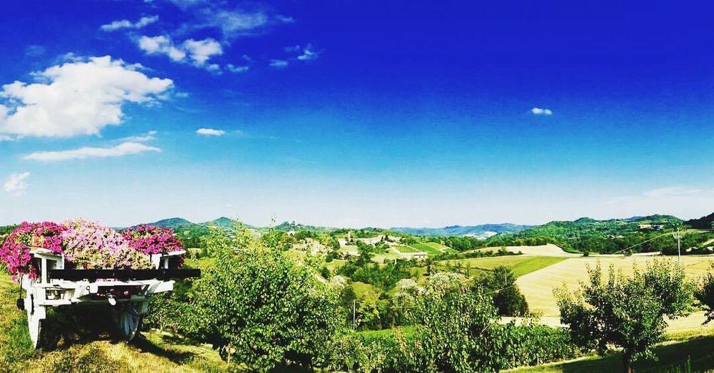 Colline Piemonte First Eyeem Photo EyeEmNewHere Sky Landscape Italia