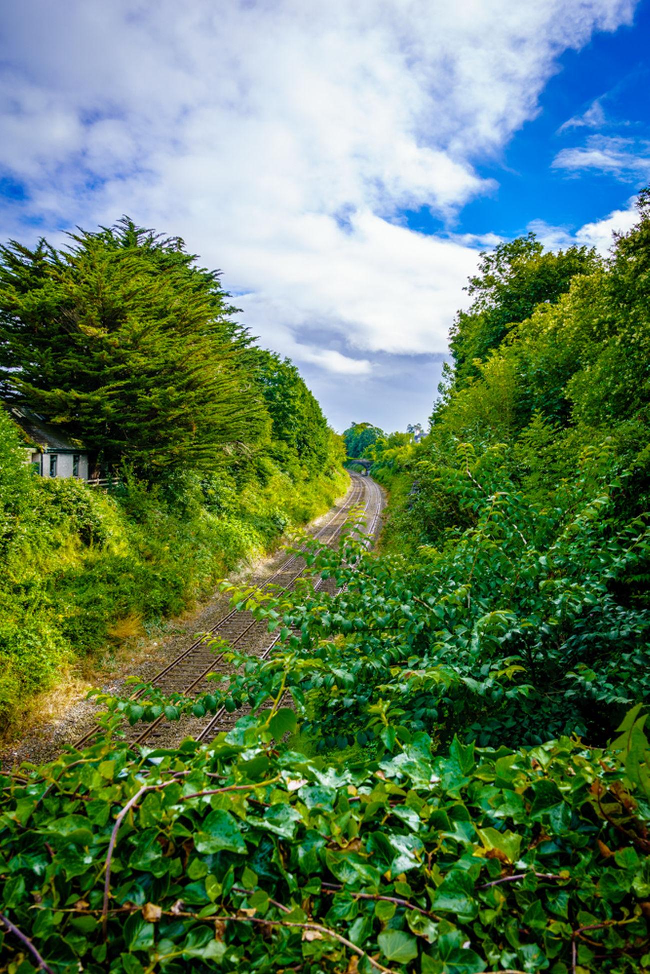 Railway tracks Marino Northern Ireland
