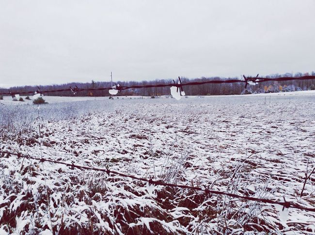 One of the first days of winter this year. Winter Snow Field