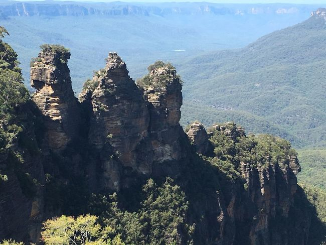 The Three Sisters Blue Mountains Blue Mountains National Park Blue Mountain Stones Indigenous  Aboriginal Australia New South Wales  Nature Nationalpark Mountains