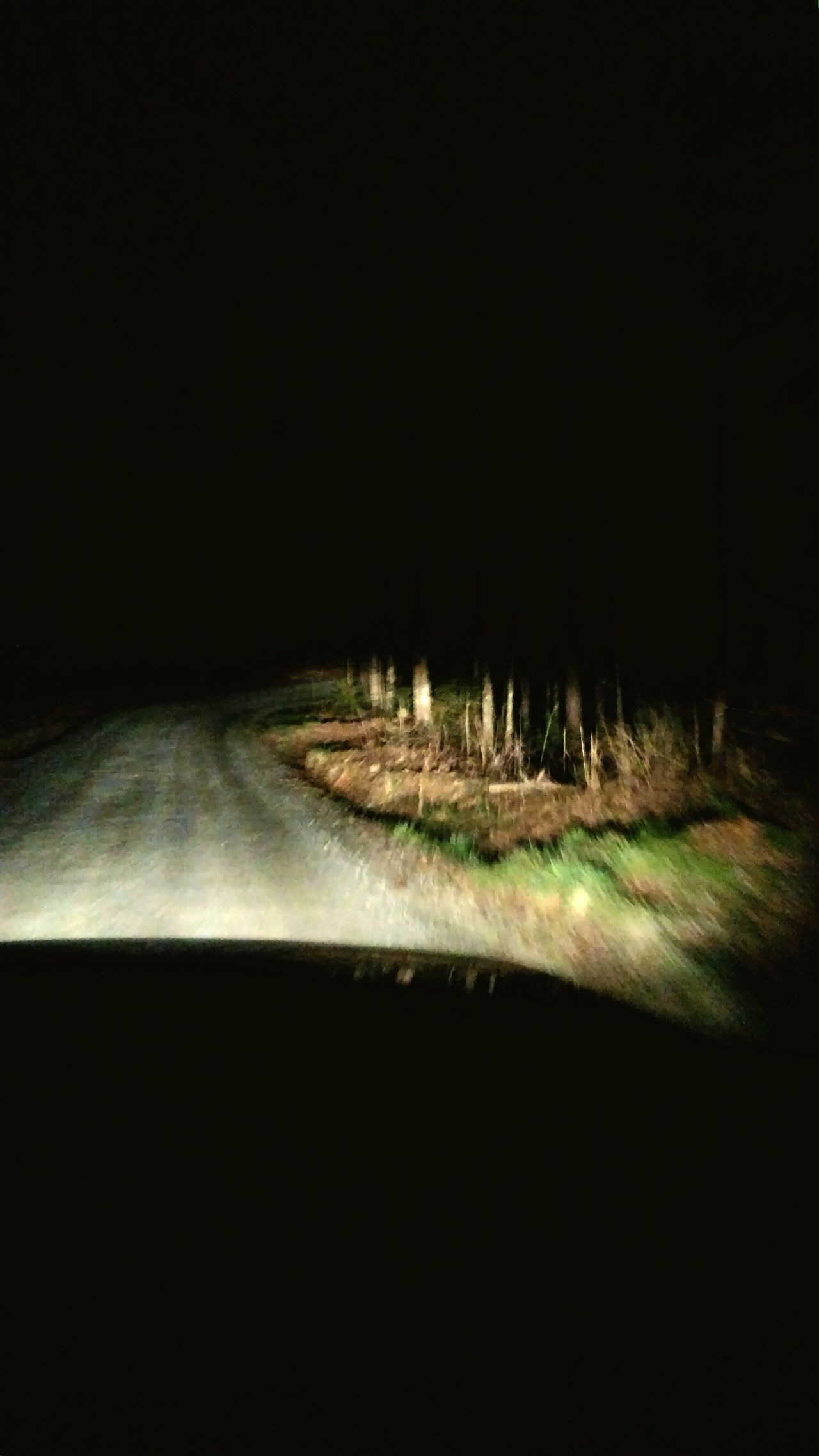 Q on a Quest in the Dark on aMountain Road. Outofthephone Dirt Road Night Lights Snipe Hunt Scary Shadows Driving Night View Forest Woods Optoutside Theellijays Nightphotography