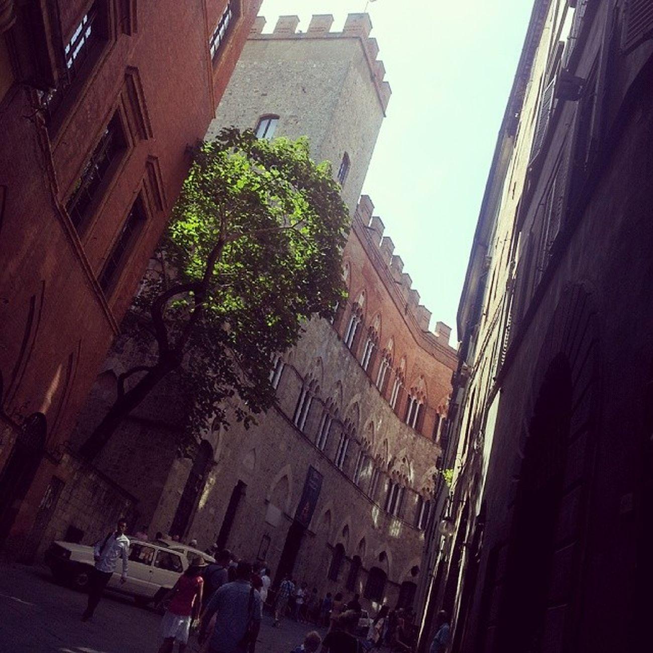 Beautiful Tuscany Tuscany Siena Sangiminiano Volterra medioevo medievaltimes citytour landscape architecture
