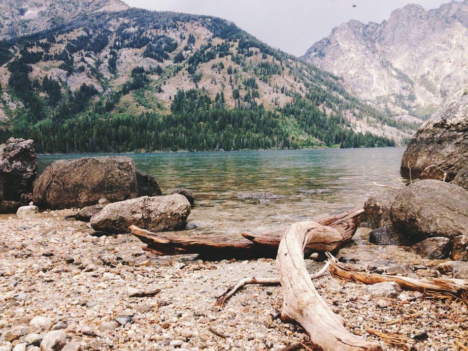 Beautiful stock photos of rock, Alpine, Beautiful, Beauty In Nature, Brushwood