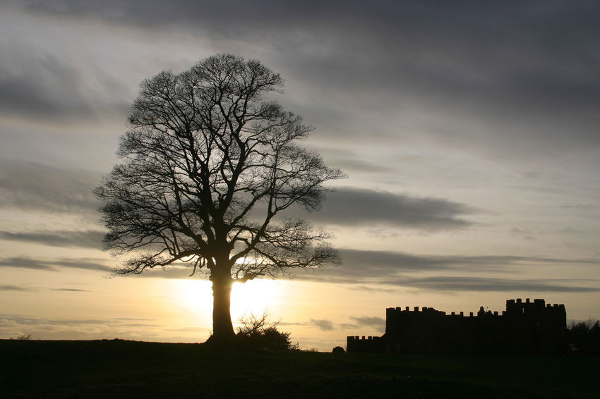Architecture Bare Tree Beauty In Nature Bromsgrove Building Exterior Built Structure Cloud - Sky Country Park Day Landscape Lickey Hills Lone Nature No People Outdoors Scenics Silhouette Sky Sunset Tranquil Scene Tree Worcestershire
