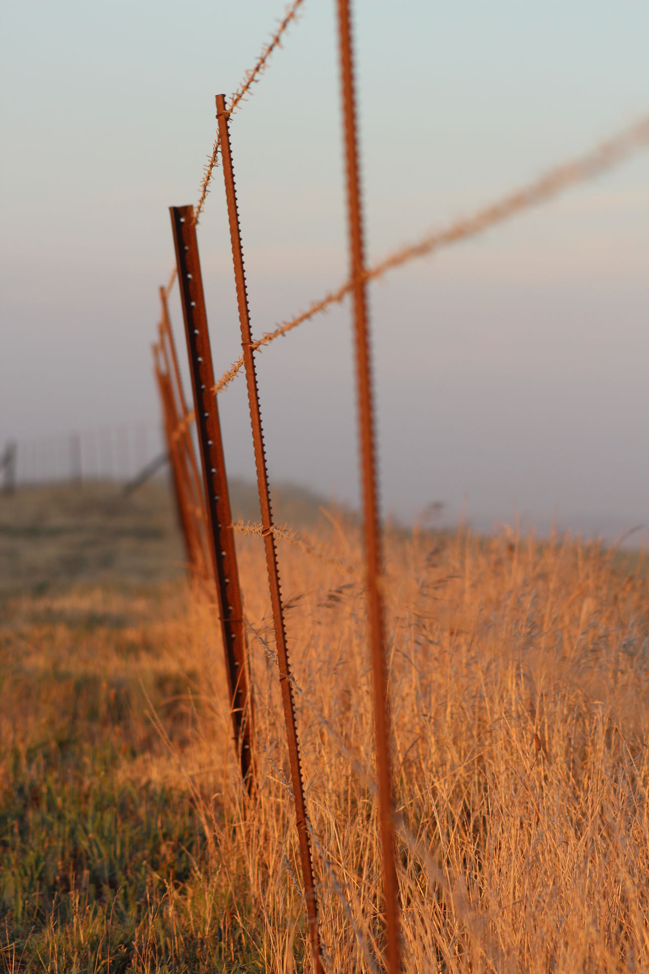 Beauty In Nature Countryside Fence Fencepost Grassland Landscape Nature Outdoors Rusted Fence Rusted Metal  Scenics Sky Sunset Wire