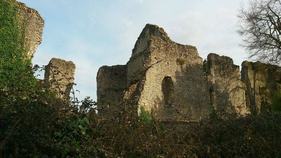 Bishops Waltham Palace Henry De Blois Oliver Cromwell 1136 Ruins Architecture