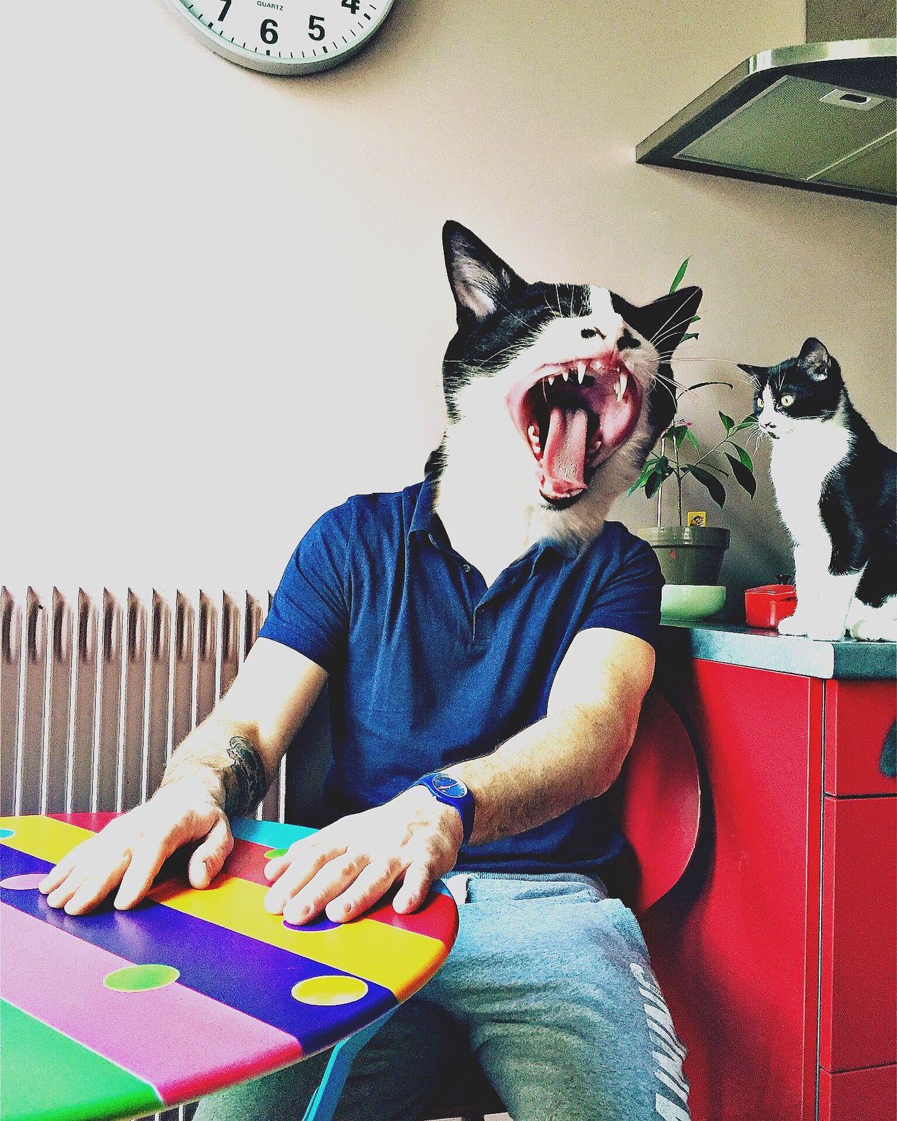 Americat Psycho. The Week On Eyem Surrealism Shootermag IPhoneArtism