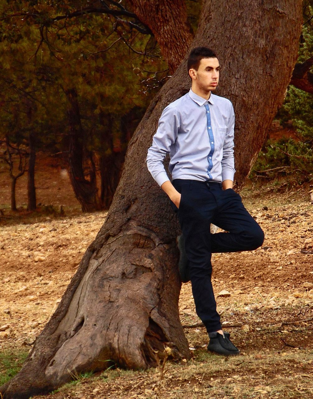 full length, tree, one person, real people, young adult, front view, casual clothing, young men, tree trunk, leisure activity, lifestyles, suit, park - man made space, forest, autumn, standing, day, outdoors, smiling, nature, adult, people, adults only