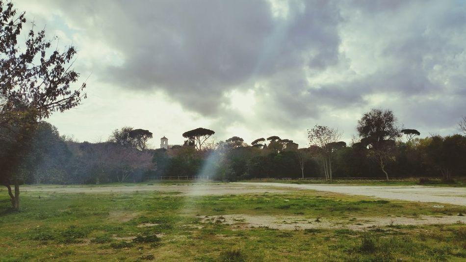 Italy, Rome, November 2016 Beauty In Nature Villa Borghese Park