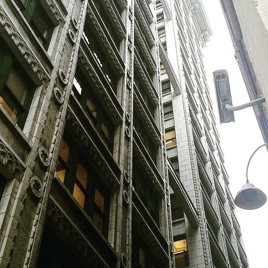 The Architect - 2017 EyeEm Awards Architecture Built Structure Low Angle View Building Exterior Skyscraper City Washington State Seattle, Washington Architecture Veiwpoint Of A Homeless Seattle Girl