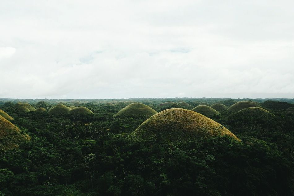 Bohol Phillipines Outdoors Landscape Scenics No People Beauty In Nature Field Chocolatehills