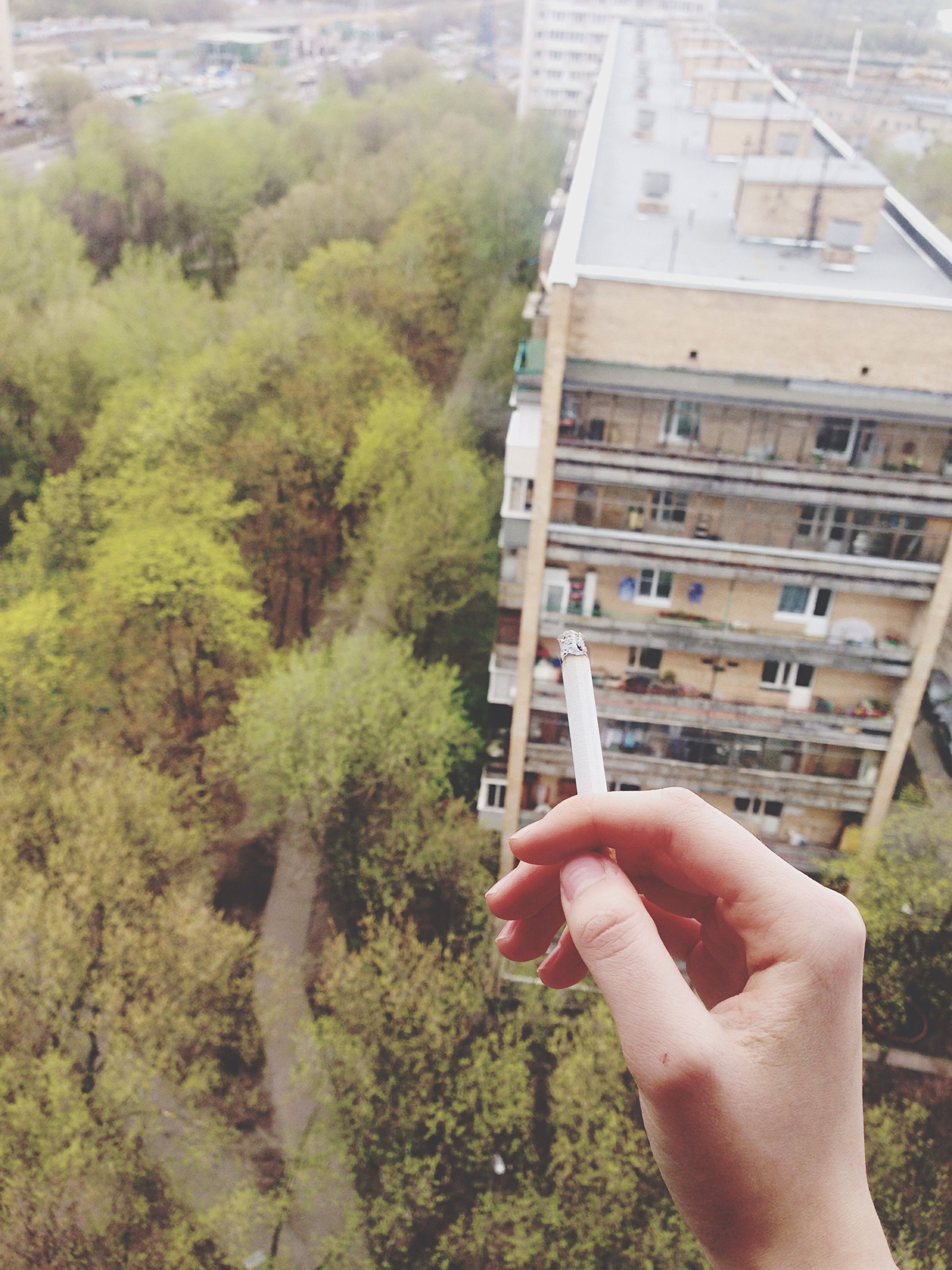person, part of, holding, cropped, personal perspective, lifestyles, tree, leisure activity, building exterior, built structure, architecture, unrecognizable person, human finger, men, day, outdoors