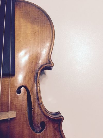 Violin detail The Week On EyeEm Arts Culture And Entertainment Beauty Cello Classical Music Close-up Day Double Bass Guitar Indoors  Instrument Maker Italy Music Musical Instrument Musical Instrument String No People String Instrument Violin Violinist Wood - Material Woodwind Instrument