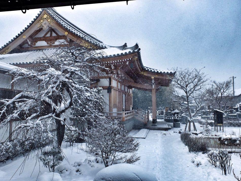 雪! Taking Photos Great View