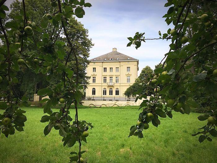 Schloss Mickeln Schloss Mickeln Obstwiese Schlosspark Äpfel