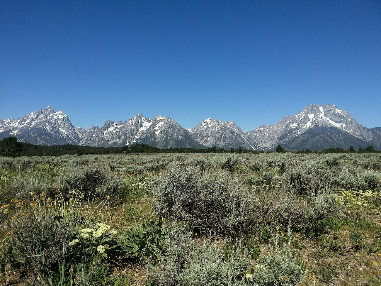 Exploring 14 national parks was incredible, but there is so much more to see. I took notes on areas I wasn't able to get to and others I will explore further. One place definitely hits the top of the list. Grand Teton National Park, particularly for mountaineering. I'm putting this one my must climb list! RoadTripxUSA Mountain Nature Landscape