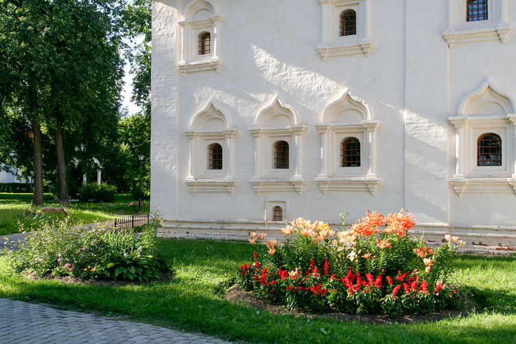 The wall of the community building of the Saviour Monastery of St. Euthymius, Russia, Suzdal Russia. Suzdal Architecture Building Exterior Day Flower Golden Ring Golden Ring Of Russia Grass Green Color Monastery No People Orthodox Outdoors Russia Summer Suzdal