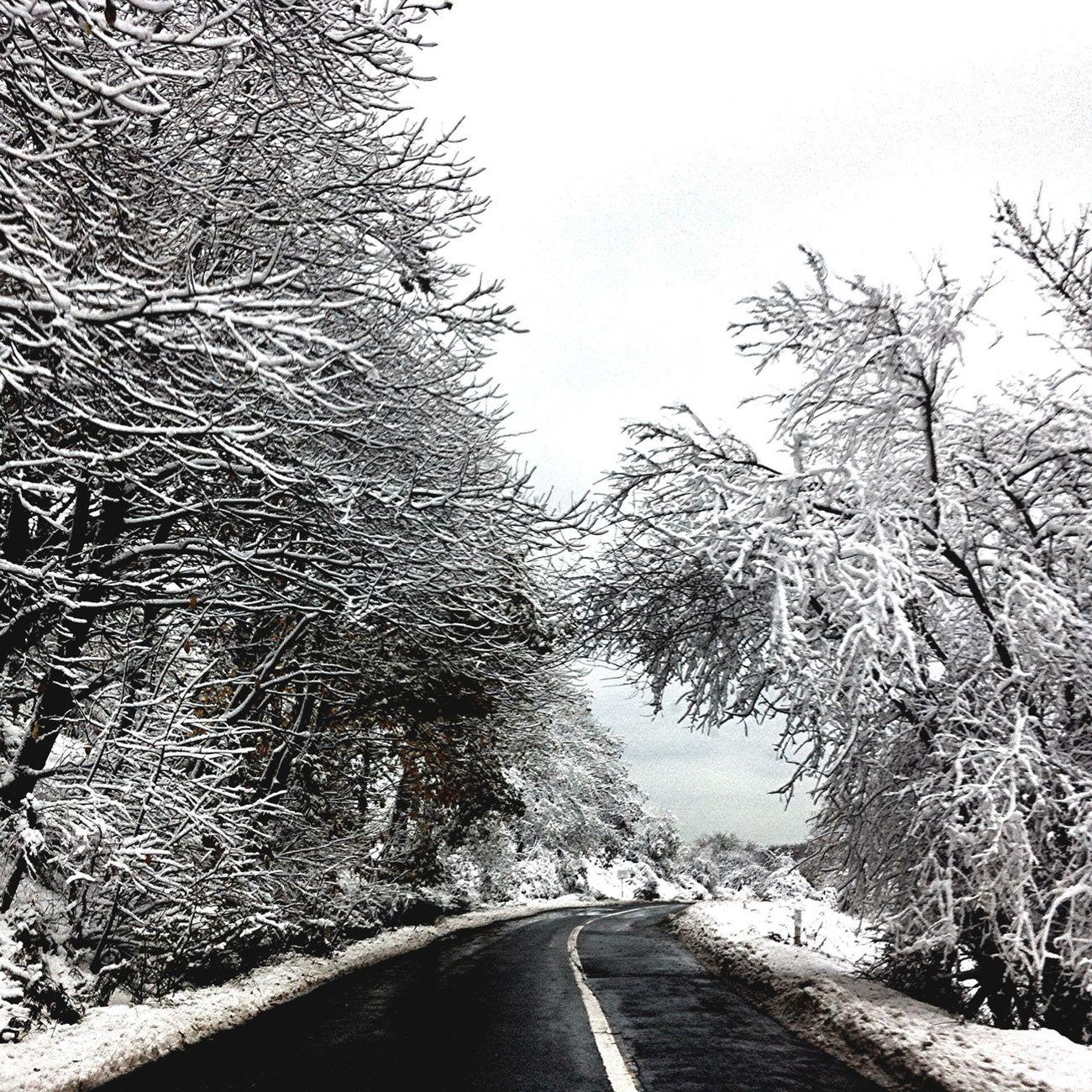 #snowbound