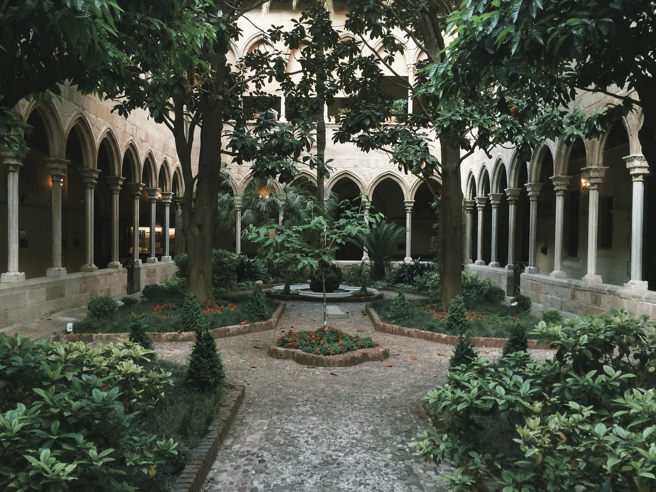 Arch Architecture Calm Church Cloister Day Introspection Meditation No People Outdoors Plant Spirituality Tree