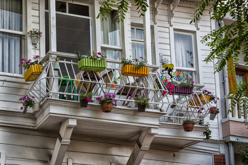 beautiful balcony Wood Architecture Balcony Building Exterior Built Structure City Day Decoration Flower House Low Angle View No People Outdoors Residential Building Tree White Window Window Box