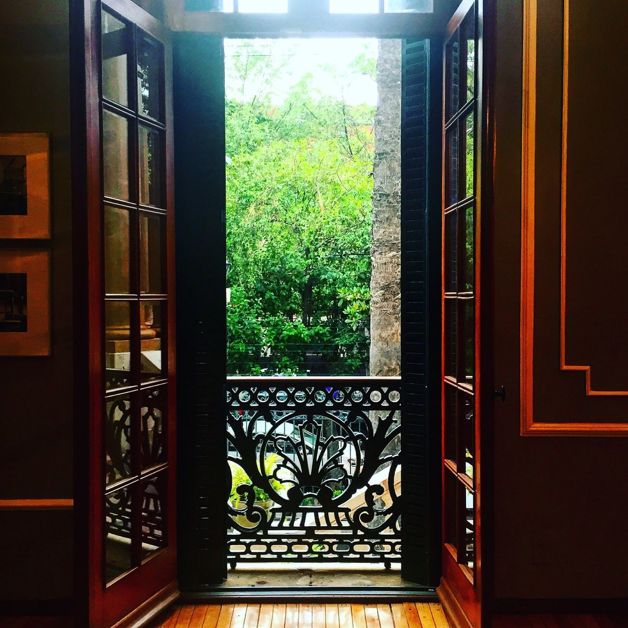 window, indoors, door, tree, no people, day, home interior, nature, architecture, close-up