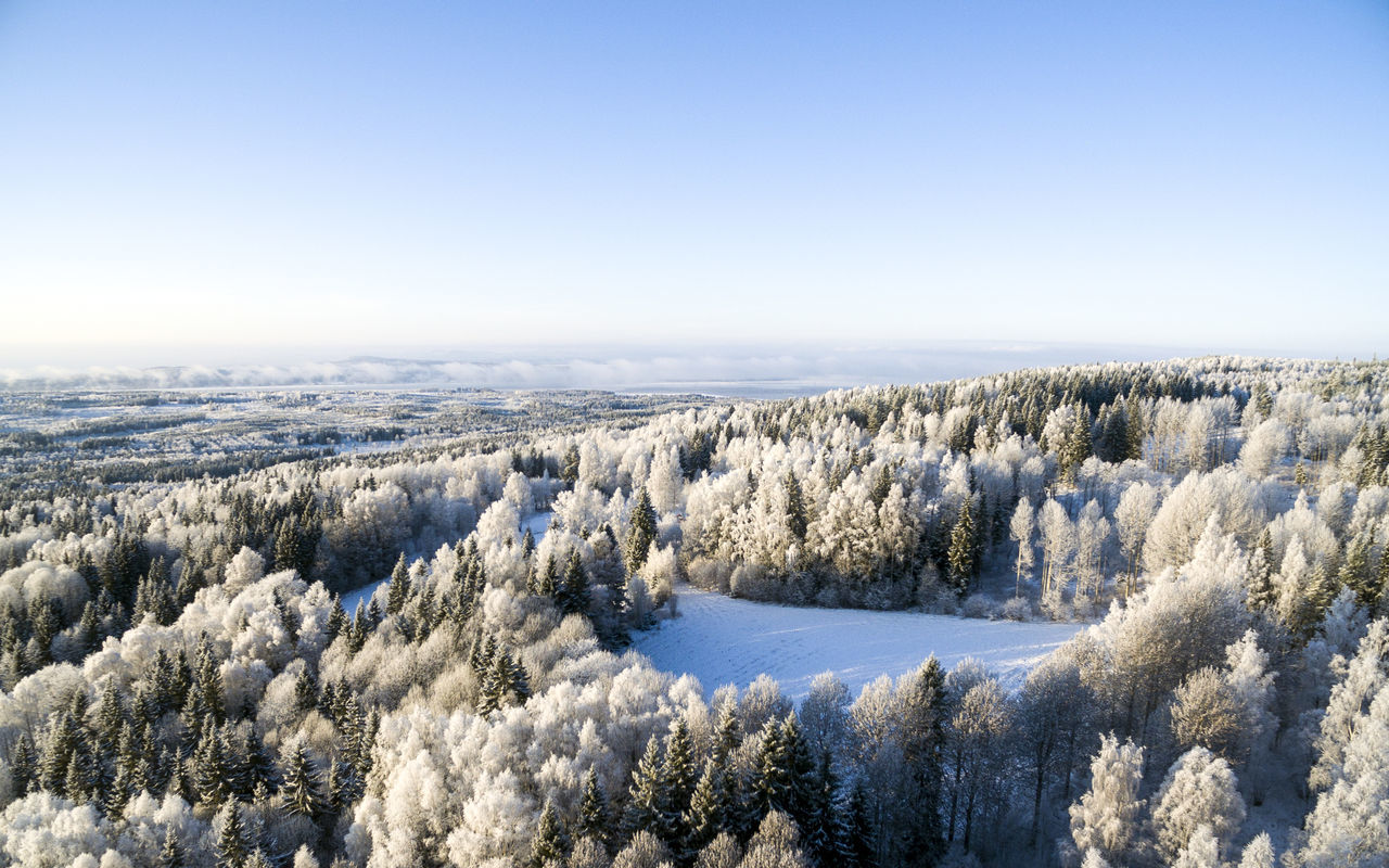 Droneshot during winter in Sweden Beauty In Nature Coastline Cold Cold Temperature Drone  Dronephotography Droneshot Geology Horizon Over Water Idyllic Leksand Nature Outdoors Scenics Sea Snow Trees Water Winter Winter Wonderland Wintertime Market Bestsellers July 2016 Bestsellers