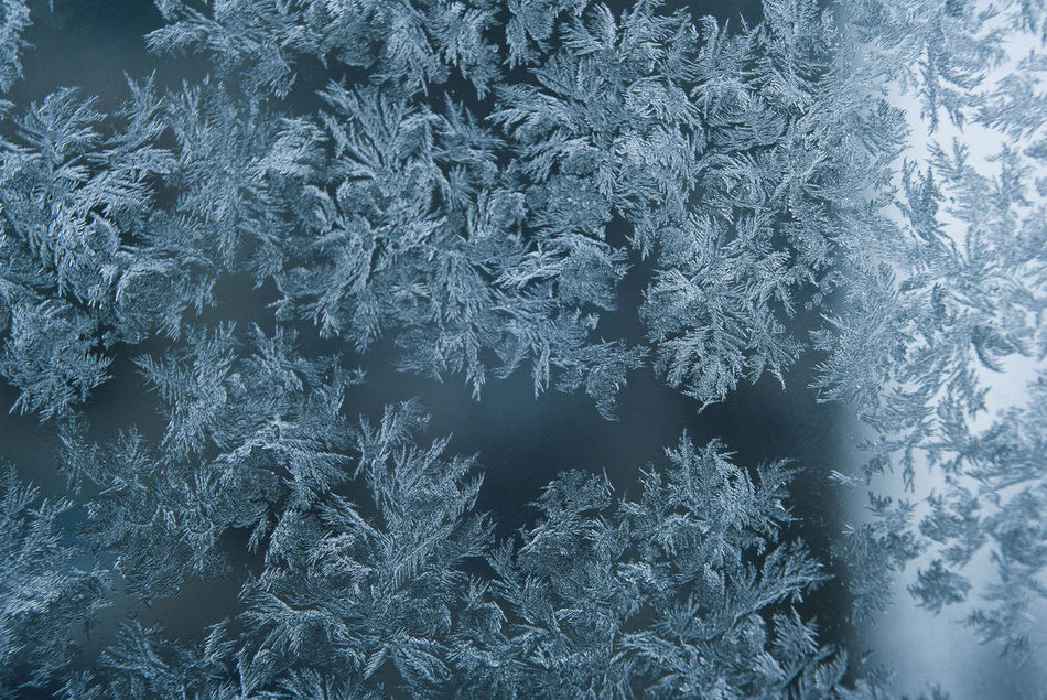 Frozen Abstract Backgrounds Close-up Cold Temperature Frost Frosted Glass Frozen Frozen Snow Ice Ice Crystal Pattern Snowflake Textured  Winter Macro Macro Photography Beauty In Nature Macrophotography Textured  Macro Beauty Macroclique Macro Ice Crystals Macro Ice