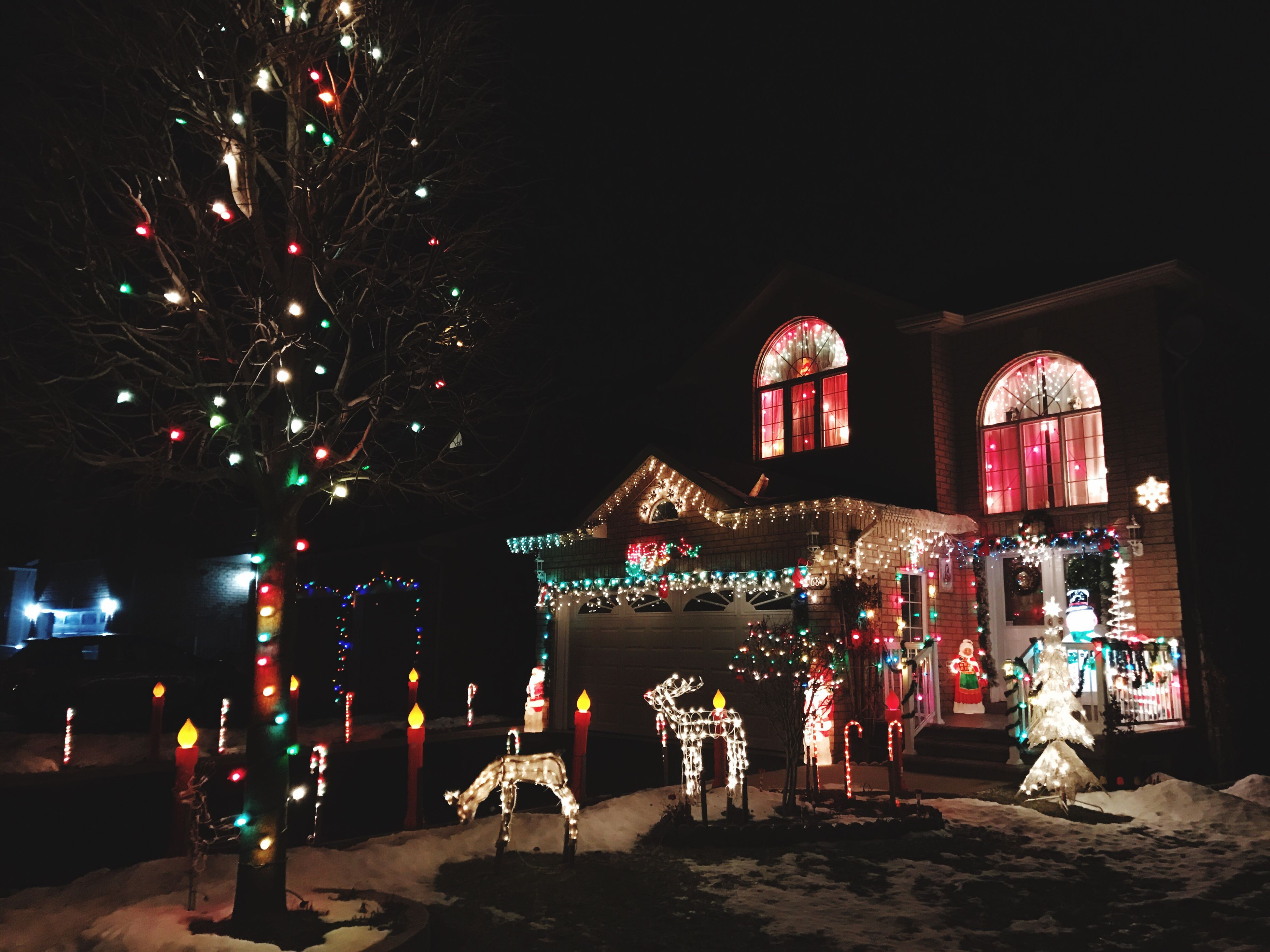 christmas, celebration, night, illuminated, christmas lights, christmas decoration, multi colored, no people, christmas tree, built structure, tradition, holiday - event, tree, outdoors, sky, architecture