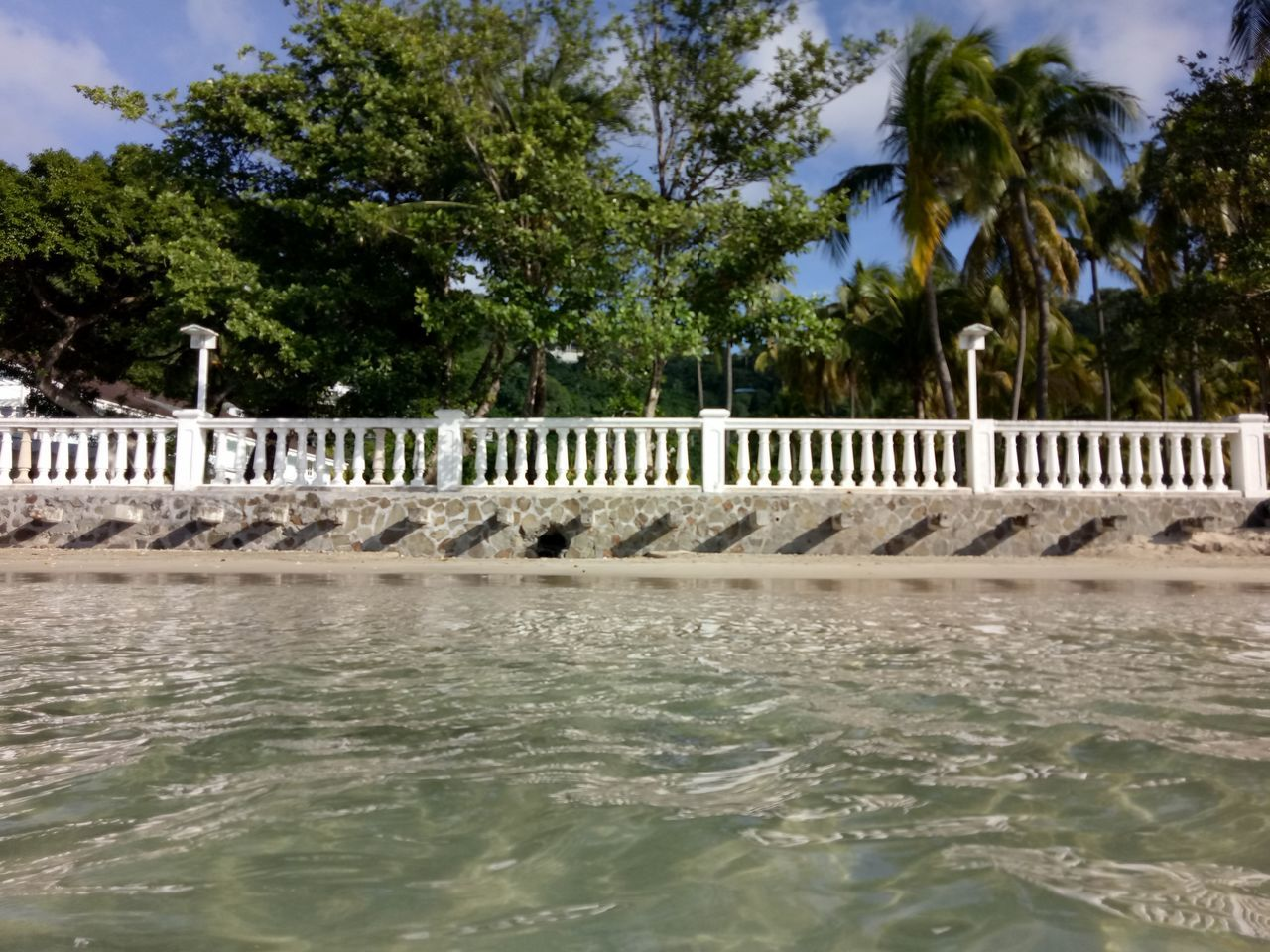 Baech Tree Water Waterfront Outdoors Palm Tree No People Nature Day Sea Sky Bridge - Man Made Structure Architecture Beauty In Nature Hydroelectric Power
