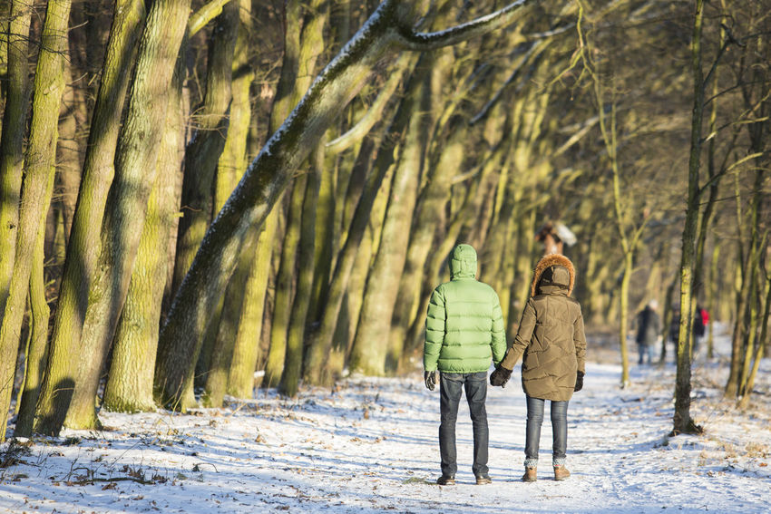 06.01.2017 The Stefan Starzyński Kabaty Woods Nature Reserve Cold Temperature Couple Daily Life Day Forest Holding Hands Kabaty Nature Nature Outdoor Activity Outdoors Park People Poland Reserve Snow Starzyński Stefan Warsaw Winter WoodLand Woods