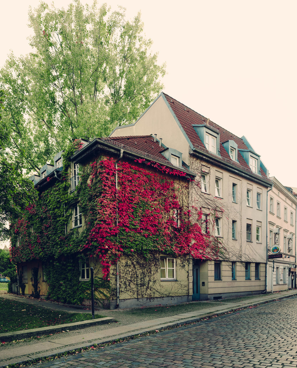 Corner house in Spandau covered with red and green autumn leaves and a hint of nostalgia. Autumn Autumn Colors Autumn Leaves Cobbled Streets Contrast Nostalgic  Red Spandau
