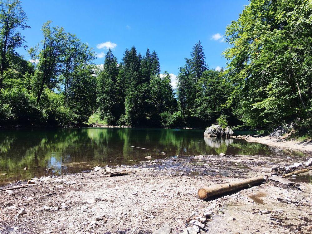 Untouched Nature oedsee Lake upper austria Landscape wilderness