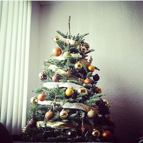 The Culture Of The Holidays My Christmas Tree Love Gift