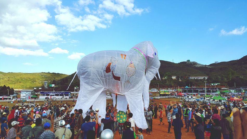 Taunggyi Hot Balloons Festival Taunggyi Hot Balloons Hot Air Balloons Elephant Myanmar