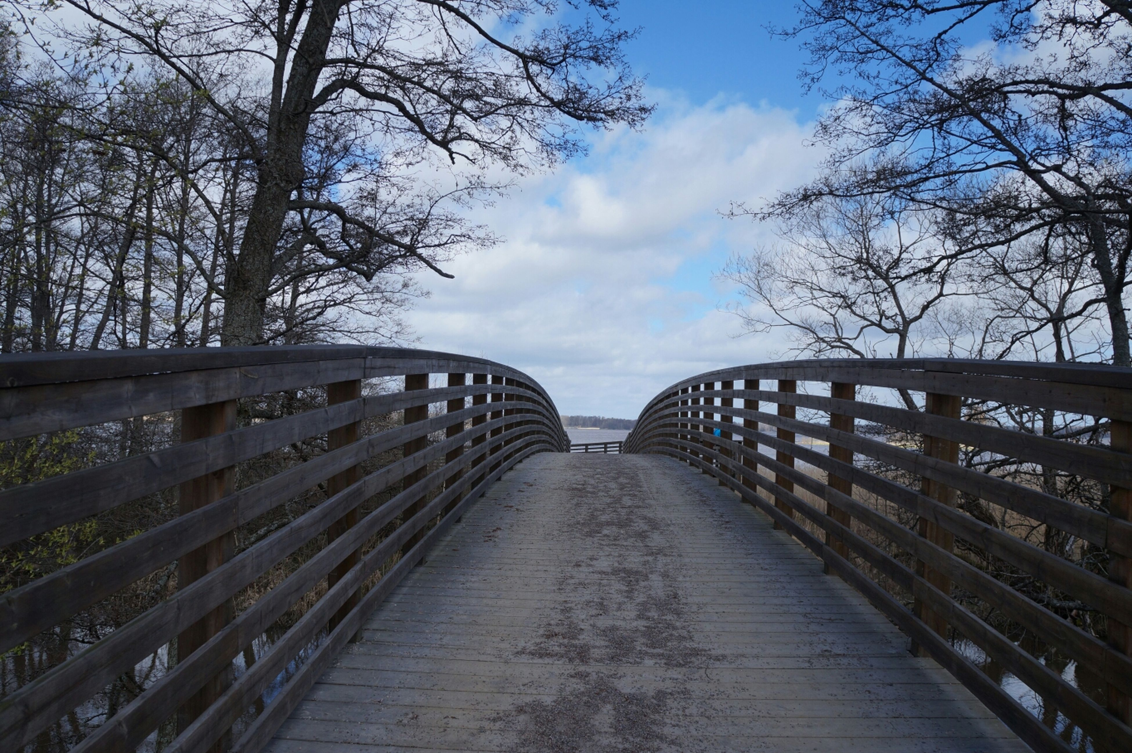 the way forward, tree, diminishing perspective, sky, railing, vanishing point, bare tree, footbridge, tranquility, cloud - sky, built structure, long, connection, nature, branch, bridge - man made structure, wood - material, boardwalk, tranquil scene, walkway