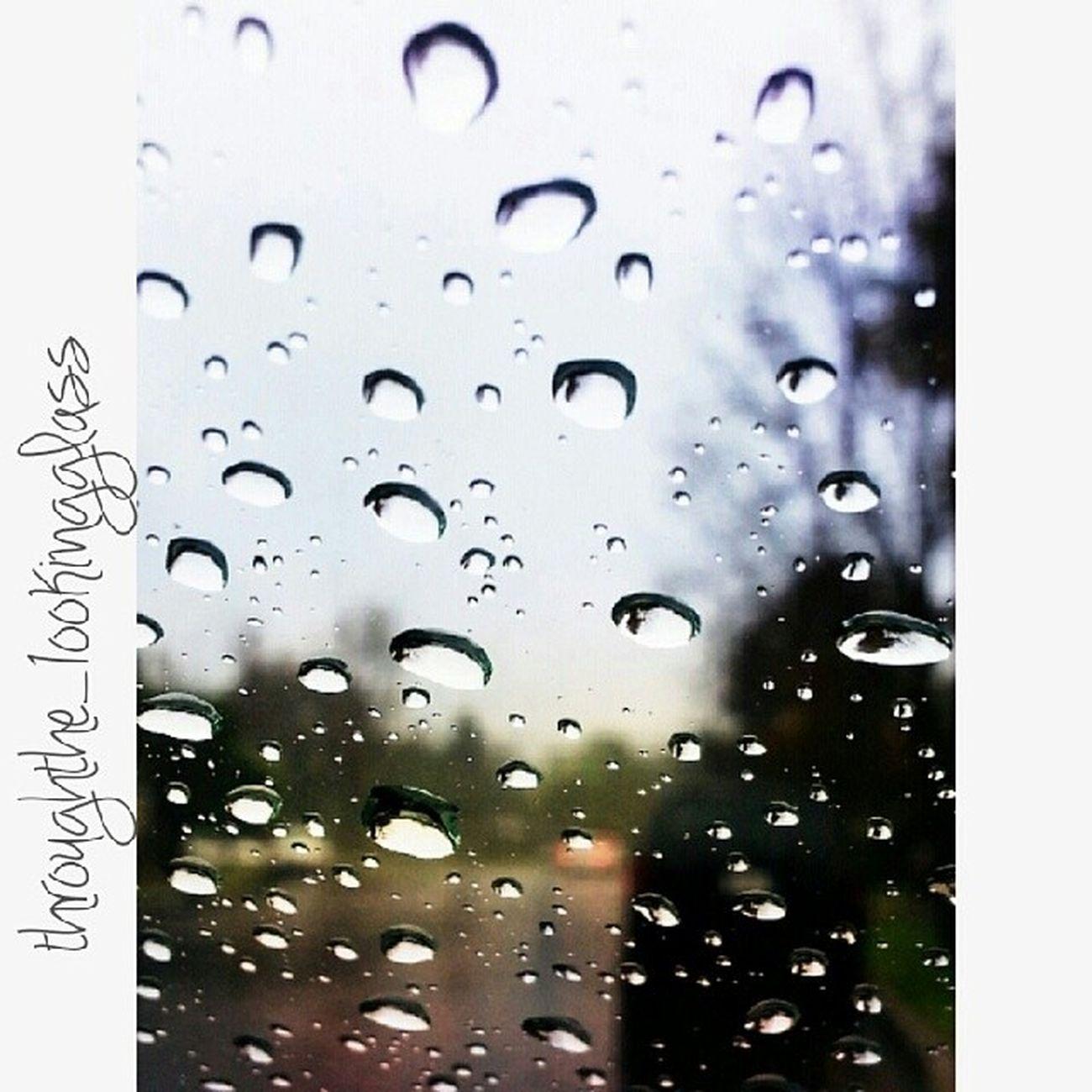 Rain Photography Nature Cali Weather
