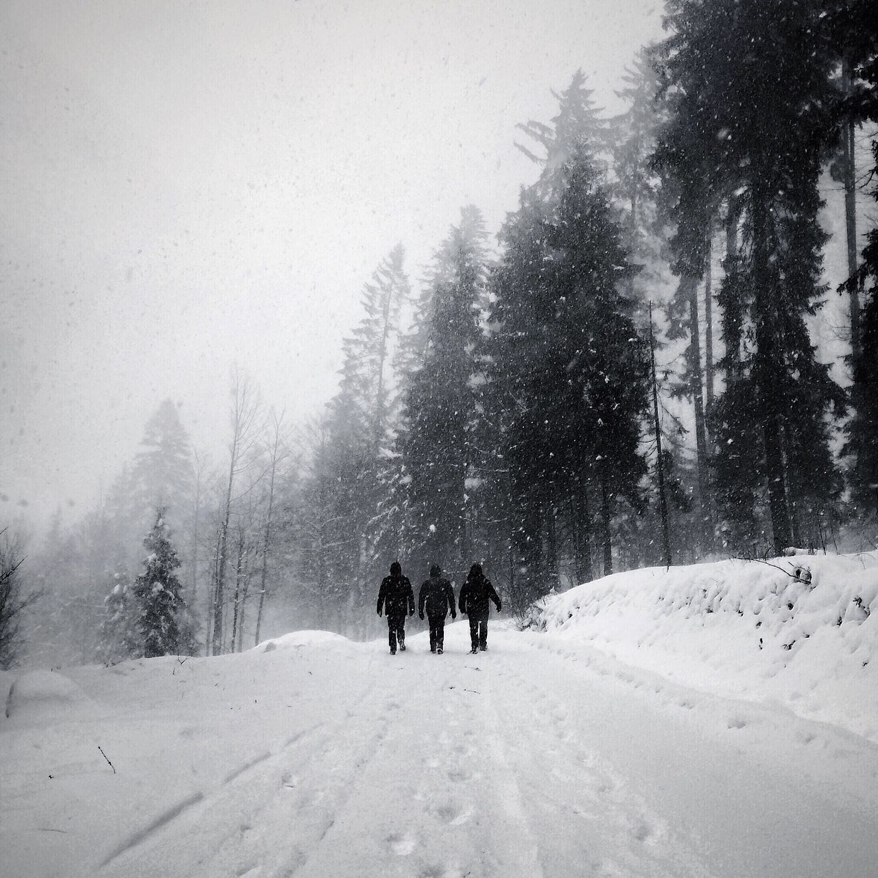 Beautiful stock photos of walk, Cold, Cold Temperature, Day, Full Length