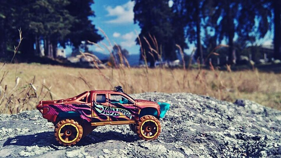 Diecastphotography Photography HotWheels Collector Outdoors Nature No People Sand Tree Sky Day