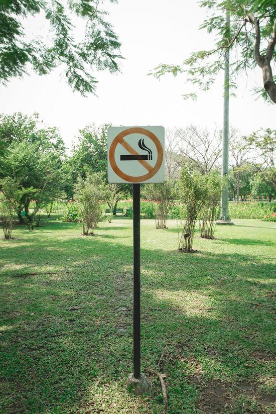 No smoke Art Communication Day Garden Label Nature Nature No People No Smoke No Smoking Outdoors Remind Reminder Road Sign Sky Smoke Smoking Tree