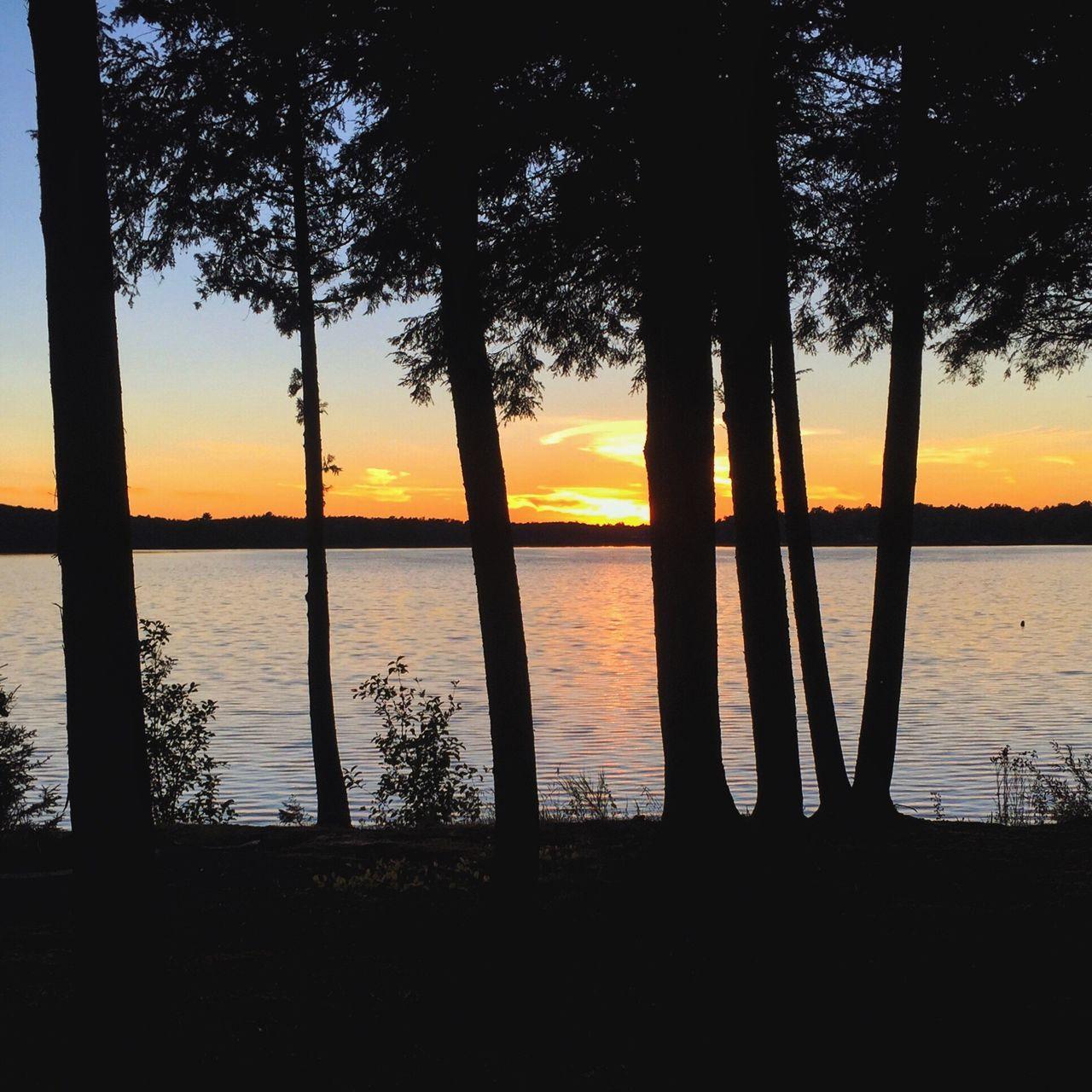 Lake sunset Sunset Water Silhouette Beauty In Nature Sky Lake Puremichigan Snapseed Nature