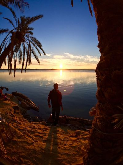 Hope Beach Beauty In Nature Day Full Length Horizon Over Water Leisure Activity Men Nature One Man Only One Person Only Men Outdoors Palm Tree People Rear View Reflection Sand Sea Siwa Sky Sunset Tourism Vacations Water