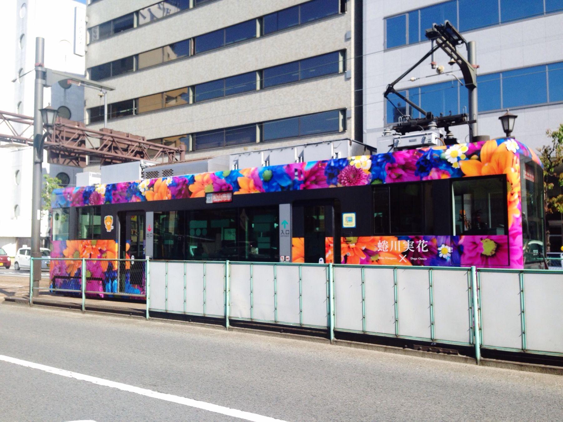 ラッピング電車。ver. 蜷川実花×道後オンセナート。 Public Transportation Artist