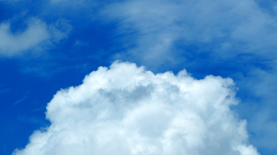 Big white cloud on the blue sky in summer clear day. Backgrounds Beauty In Nature Blue Cloud - Sky Day Low Angle View Nature No People Outdoors Scenics Sky Sky Only Sky; Clouds; Cloud; Blue; Vector; Background; White; Nature; Design; Air; Cloudscape; Summer; Natural; Spring; Space; Illustration; Fluffy; Cloudy; Cumulus; Beauty; Abstract; Color; Pattern; Bright; Light; Outdoor; Day; Sunny; Environment; Weather; High;  White Color