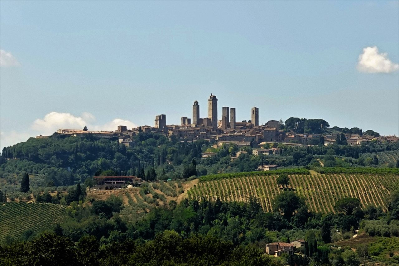 Piazza della Cisterna Agriculture Architecture Beauty In Nature Built Structure Cityscape Etruscan Civilization Growth Historic Centre Manhatten Skyline Medival City Nature Plant San Gimignano Skyscraper Torre Toscana ıtaly Urban Skyline