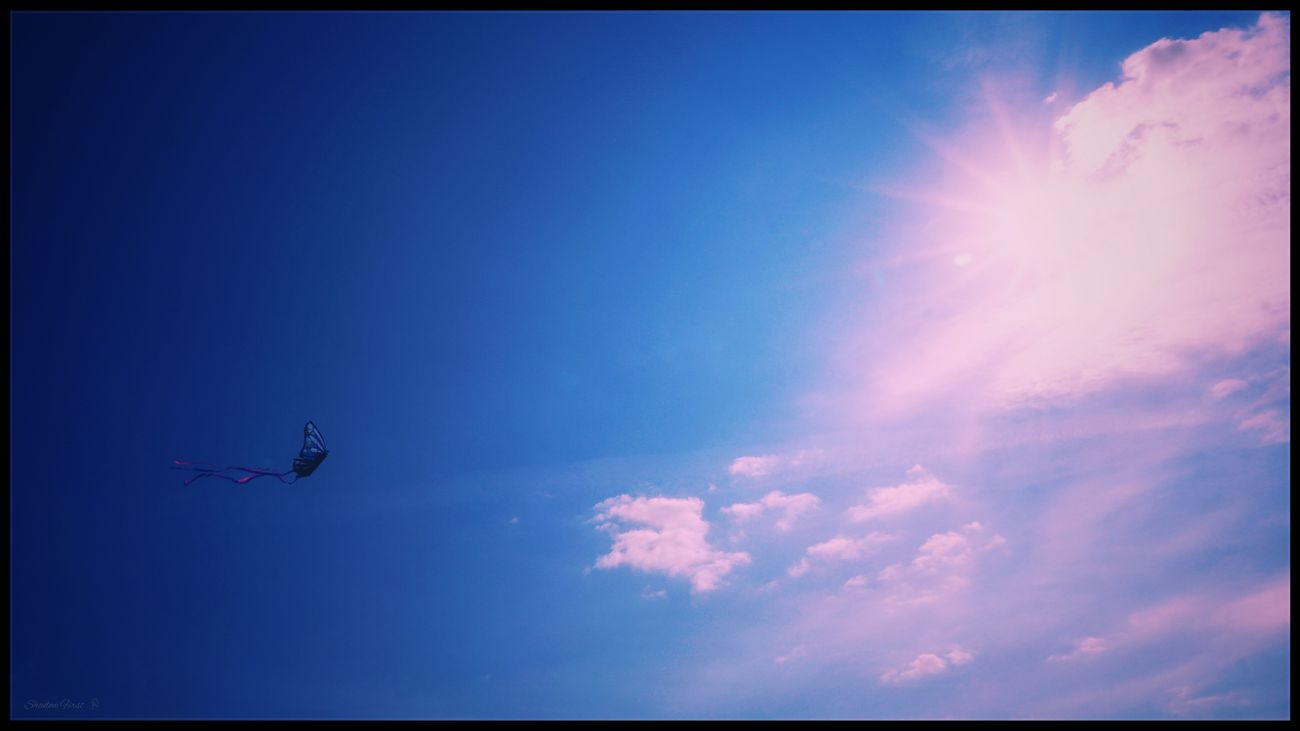 Fly... Kite Flying Sunlight Sun Reflection Sky And Clouds From My Point Of View Exceptional Photographs Minimalism Relaxing Tranquility Dreamer's Vision One Shot Photography Capture The Moment Taking Photos Getting Inspired Perspective EyeEmNewHere EyeEm Best Shots Freshness My Unique Style Flying Blue Springtime Beuty In Nature Outdoors Happy :)