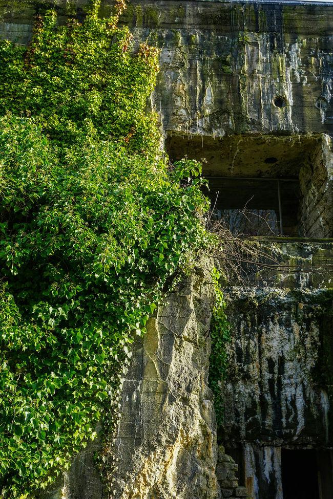 Bunker Historical Building Tristesse Urban Nature Beton