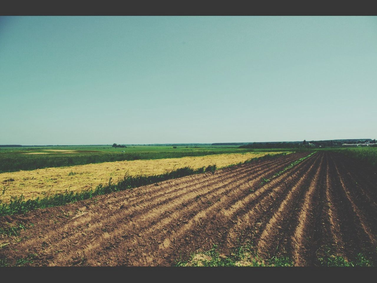 agriculture, field, landscape, rural scene, farm, nature, beauty in nature, copy space, growth, tranquility, crop, tranquil scene, clear sky, scenics, no people, day, outdoors, sky, plowed field